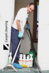 Steam Carpet Cleaning Company Thornbury 3071
