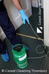 Thornbury 3071 Deep Carpet Cleaning Services