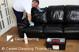 Thornbury 3071 Leather Cleaning