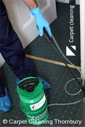 Professional Carpet Cleaners Thornbury 3071
