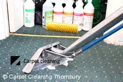 Thornbury 3071 Steam Carpet Cleaning Services